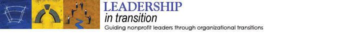 Leadership in Transition: Guiding nonprofit leaders through organizational transitions